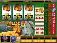 Big Five Slot Slot Reels