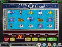 Card Shark Slot Slot Reels