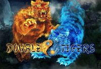 Double Tigers Slot Info