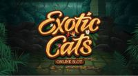 Exotic Cats Slot Info