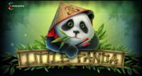 Little Panda Slot Info