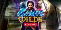 Magic Wilds Red Rake Gaming Slot Info