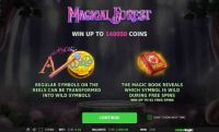 Magical Forest Slot Info