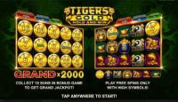 Tiger's Gold: Hold and Win Slot