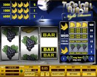 Tropical Punch Night Dream Slot Slot Reels