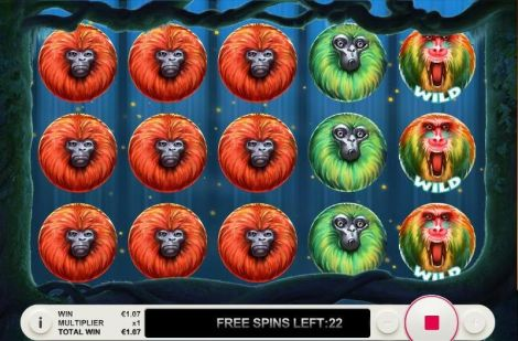 7 Monkeys Slot Slot Reels