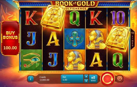 Book of Gold: Multichance Playson Slot Slot Reels