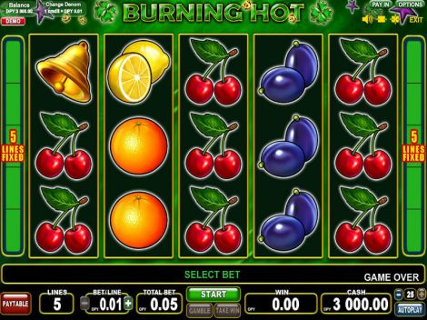Burning Hot Slot Slot Reels