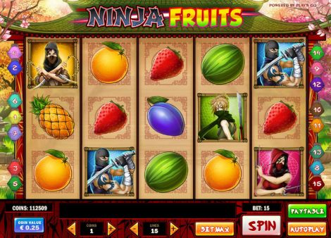 Ninja Fruits Slot Slot Reels