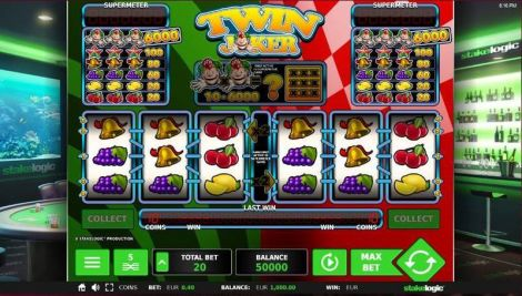 Twin Joker Slot Slot Reels